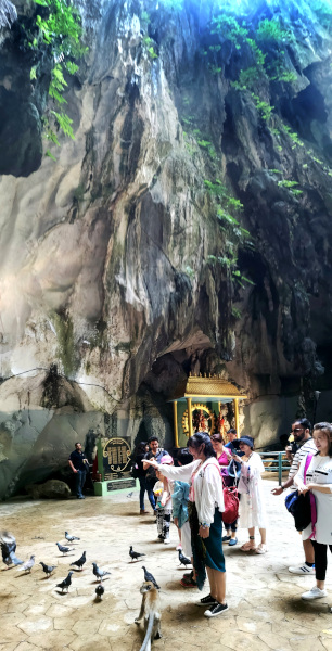 The cliff of the main cave is about 100meter high.