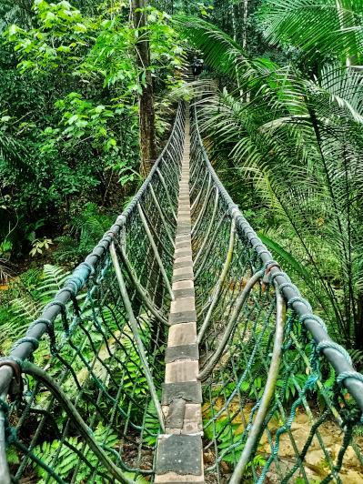 Suspending bridge at Gasing Hill