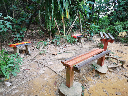 Chairs and stools at the fork of the trails