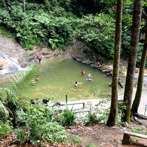 Kanching Firest reserve level 2