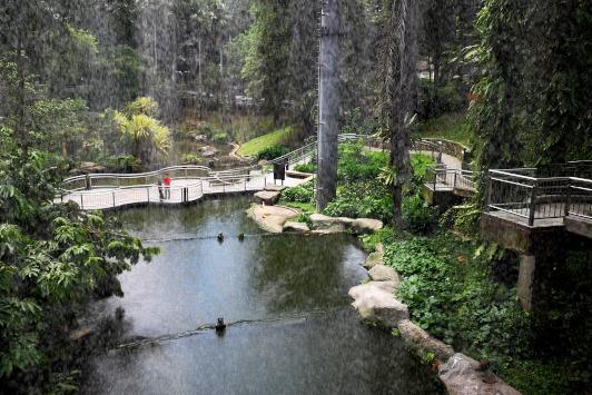 water aviary
