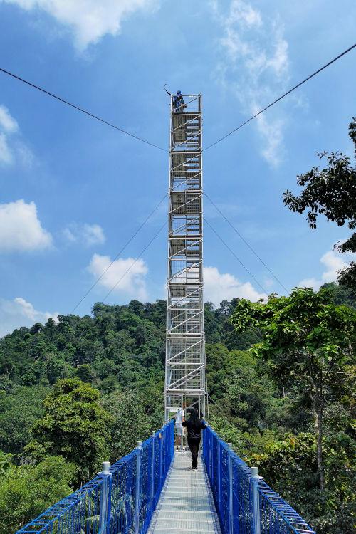 The highest tower at the Skywalk, Kepong Botanical Garden